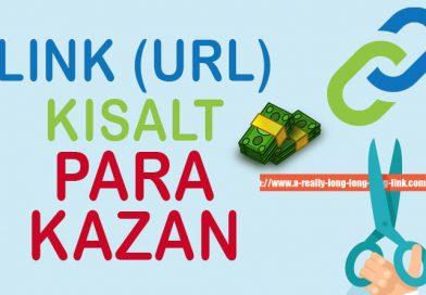 Link Kısaltarak Para Kazan (En İyi Link Kısaltma Servisi)